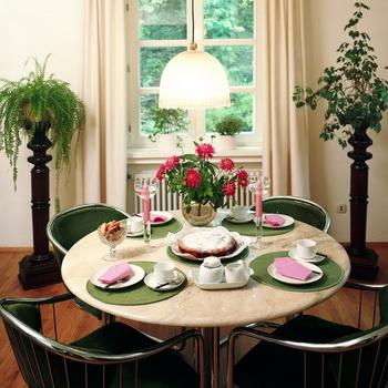 Преимущества и недостатки комнатных растений